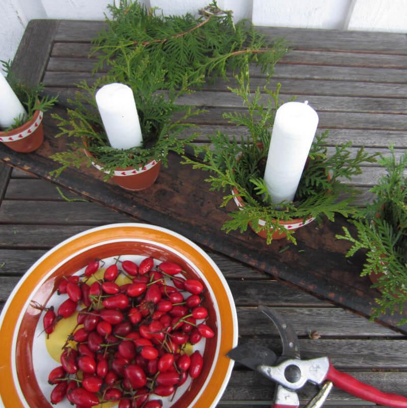 Adventi koszorú virágcserépben csipkebogyóval