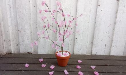 Anyák napi ajándékötlet – virágzó fa viaszból
